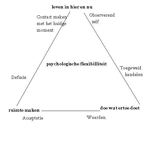 act-driehoek